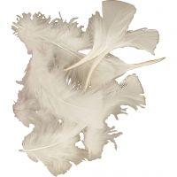 Veren, afm 7-8 cm, wit, 500 gr/ 1 doos