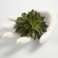 Een hand van gips gegoten in latex handschoen